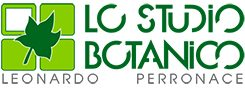 Lo Studio Botanico