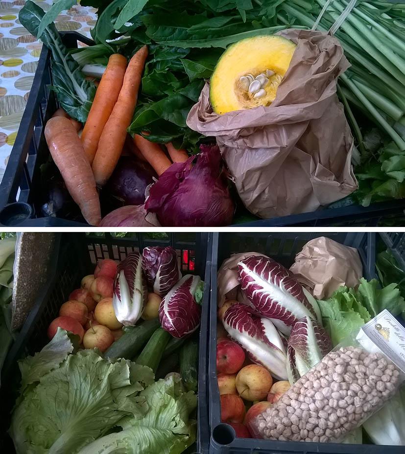 verdura agricoltura biologica - Gruppo acquisto solidale Il cetriolo blu