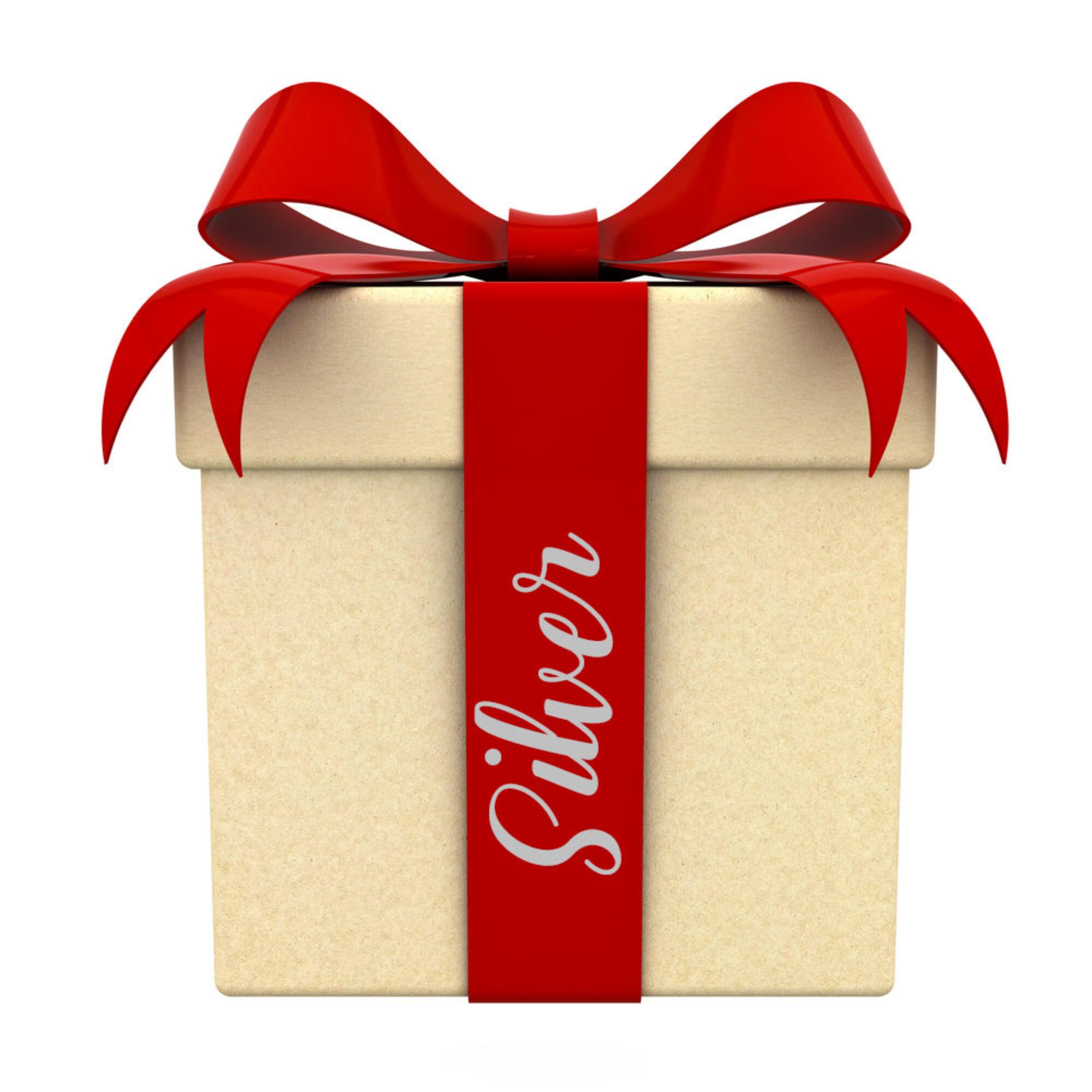 CHRISTMAS BOX SILVER